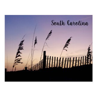 South Carolina Sunset on the Sand Dunes Postcard
