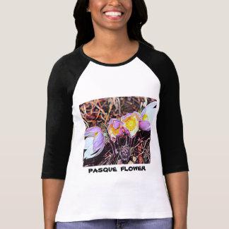 South Dakota Pasque Flower T-Shirt