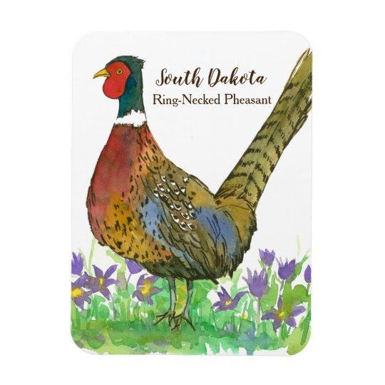 South Dakota Ring Necked Pheasant Prairie Crocus Magnet