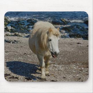 South Devon Shetland Pony Walking On Remote Beach Mouse Pad