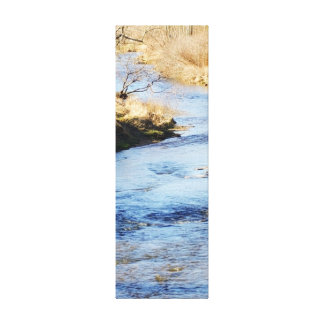 South Fork New River Canvas Print
