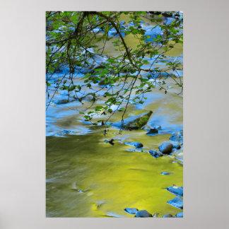 South Fork Wilson River, Oregon Poster
