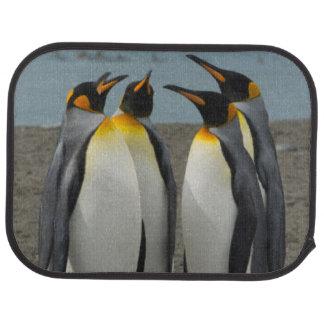 South Georgia. Saint Andrews. King penguins 8 Car Mat