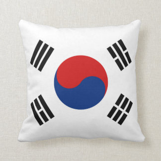 South Korea Flag x Flag Pillow