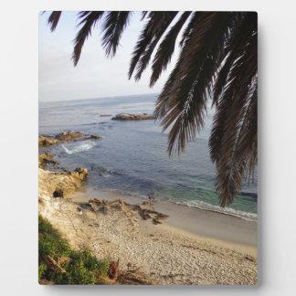 south laguna beach plaque