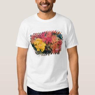 South Pacific, Fiji, Rainbow Reef in Taveuni T Shirt