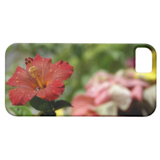 South Pacific, French Polynesia, Society 2 iPhone 5 Cover