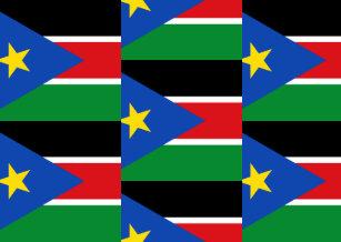 Sudan Passport Covers & Holders | Zazzle ca