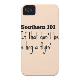 southern101-3 iPhone 4 cover
