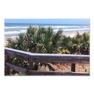 Southern Atlantic Coast Art Photo