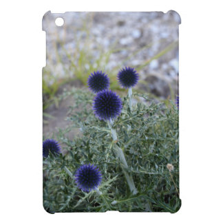 Southern globe thistle (Cardo pallotta) iPad Mini Covers
