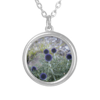 Southern globe thistle (Cardo pallotta) Silver Plated Necklace