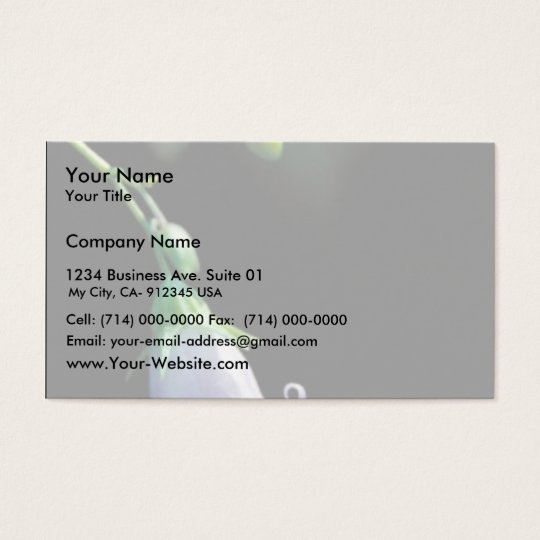 Southern Harebell Business Card