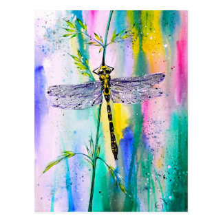 Southern Hawker Dragonfly Postcard