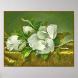 Southern Magnolia Flower Print