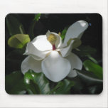 Southern Magnolia Mouse Mats