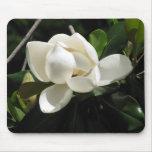 Southern Magnolia Mousepad