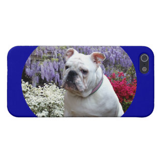 Southern Spring Cover For iPhone 5/5S