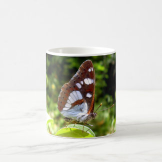 Southern White Admiral Butterfly Bug Mug