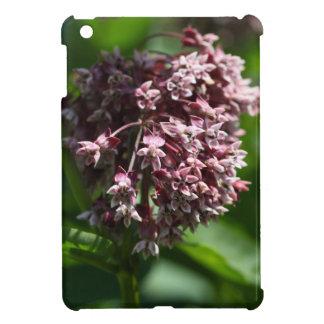 Southern Wormwood (Artemisia abrotanum) Cover For The iPad Mini