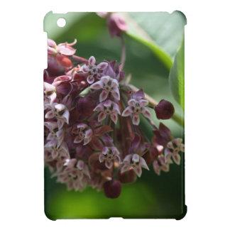 Southern Wormwood (Artemisia abrotanum) iPad Mini Case