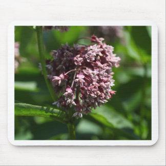 Southern Wormwood (Artemisia abrotanum) Mouse Pad