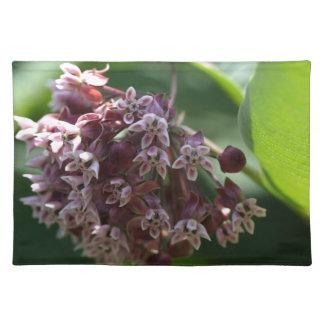 Southern Wormwood (Artemisia abrotanum) Placemat