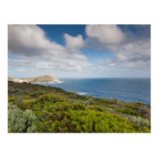 Southwest Australia, Albany Postcard