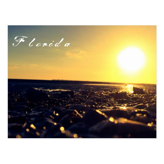 Southwest Florida beach postcard
