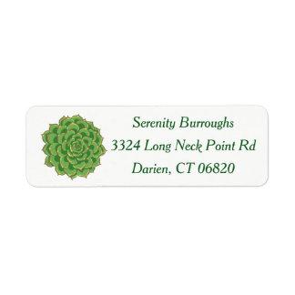 Southwest Green Succulent Cactus Floral