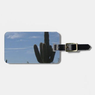 Southwest Luggage Tag