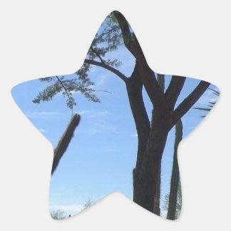 Southwest Star Sticker