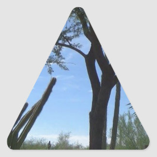 Southwest Triangle Sticker