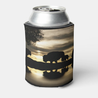 Southwestern Baffalo In the Sunset Can Cooler