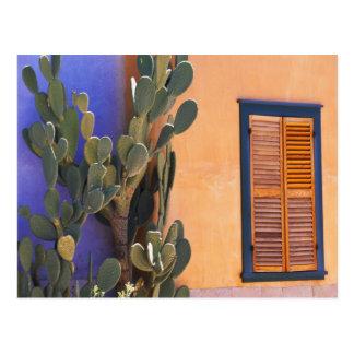 Southwestern Cactus (Opuntia dejecta) and Postcard
