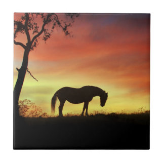 Southwestern Colour Horse in Sunrise Tile