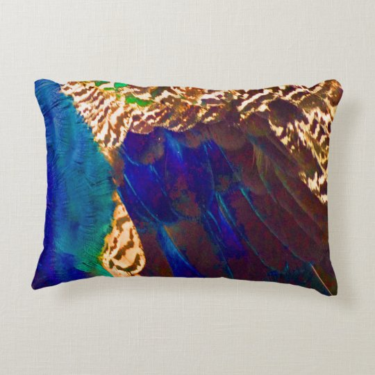 Southwestern Feathers Decorative Pillow