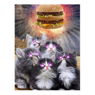 space cats looking for the burger postcard
