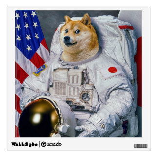 space doge decal