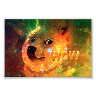 space - doge - shibe - wow doge photograph