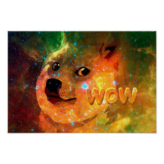 space - doge - shibe - wow doge poster
