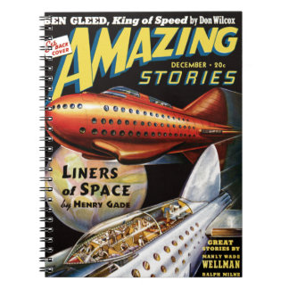 Space Liners Notebooks