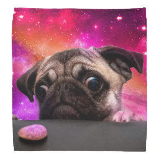 space pug - pug food - pug cookie bandana