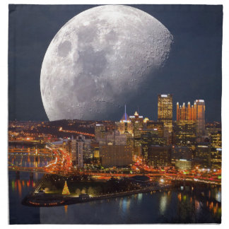 Spacey Pittsburgh Cloth Napkins