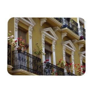 Spain, Sevilla, Andalucia Geraniums hang over Magnet