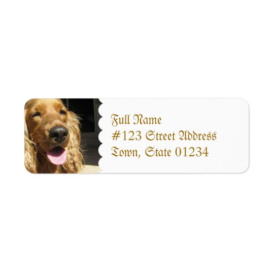 Spaniel Dog Mailing Label Return Address Label