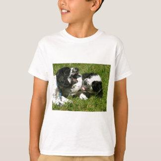 Spaniel Fun T-Shirt