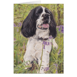 Spaniel in bluebells gift card