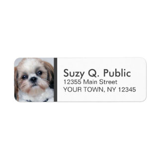 Spaniel Shih Tzu Address Label