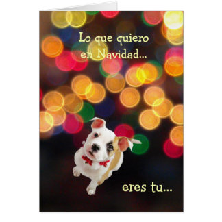 Spanish: All I want for Christmas...is you Card